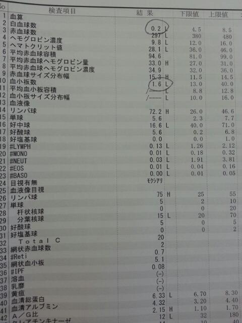 血液検査の結果(白血球・血小板・好中球・赤血球)