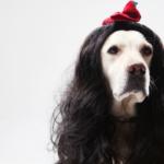 人毛のウィッグは医療用として最適?3つのメリットと4つのデメリット